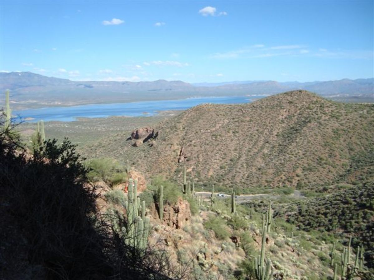 The view of  Roosevelt Lake (named after Teddy) from the cliff dwellings. The dam for this splendid lake was completed in 1915. Some of the finest fishing activity is at this lake.