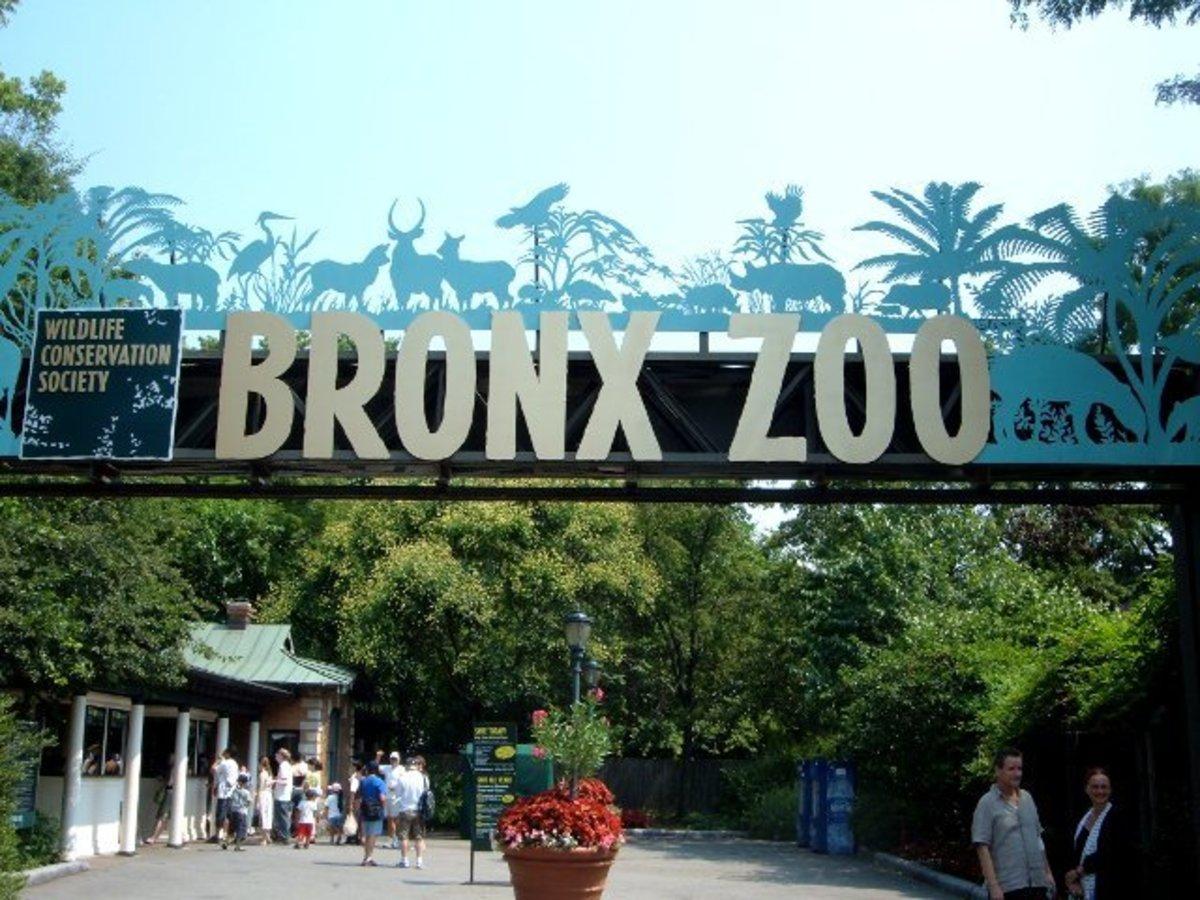 The Bronx Zoo Sign