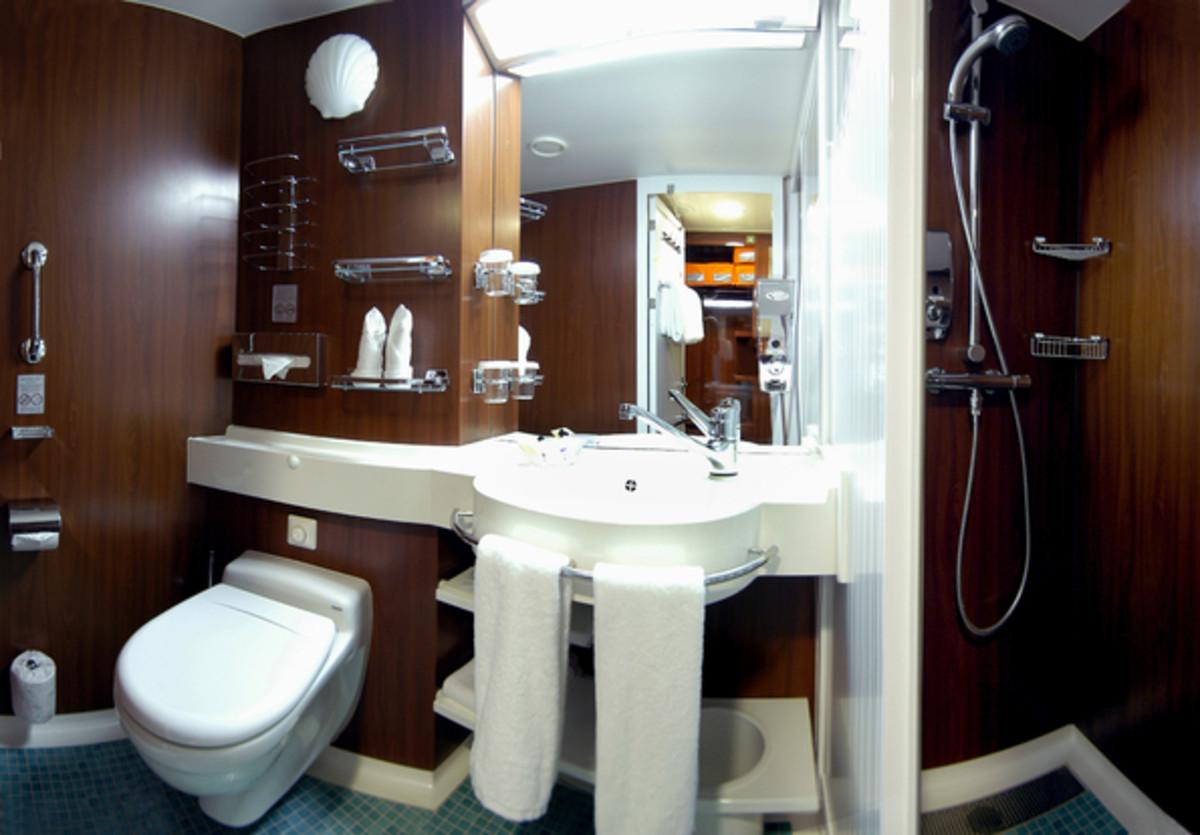 Large stateroom lavatory