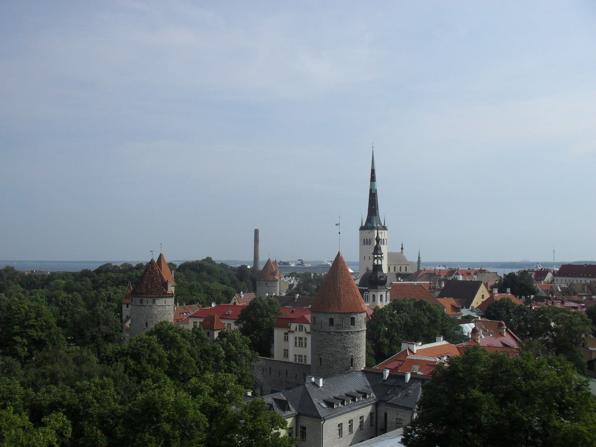 Tallinn Old Town towering above the trees.