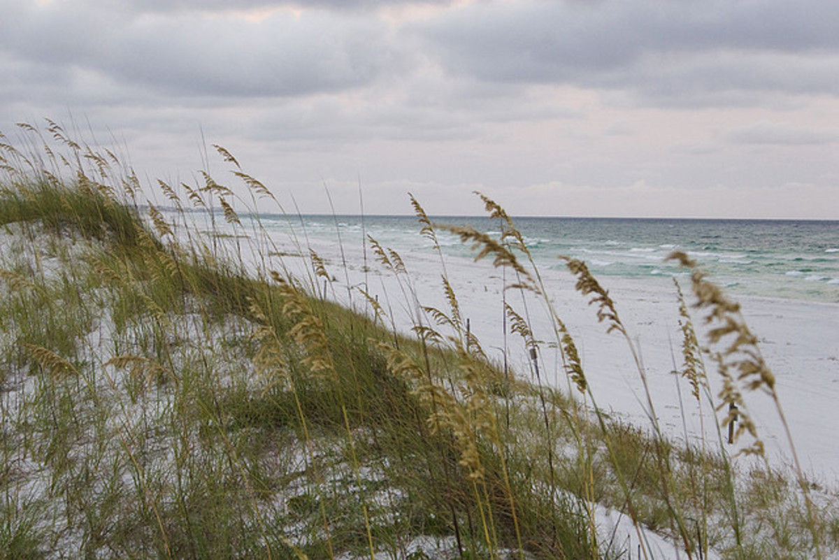 great-vacation-spots-florida-panhandle