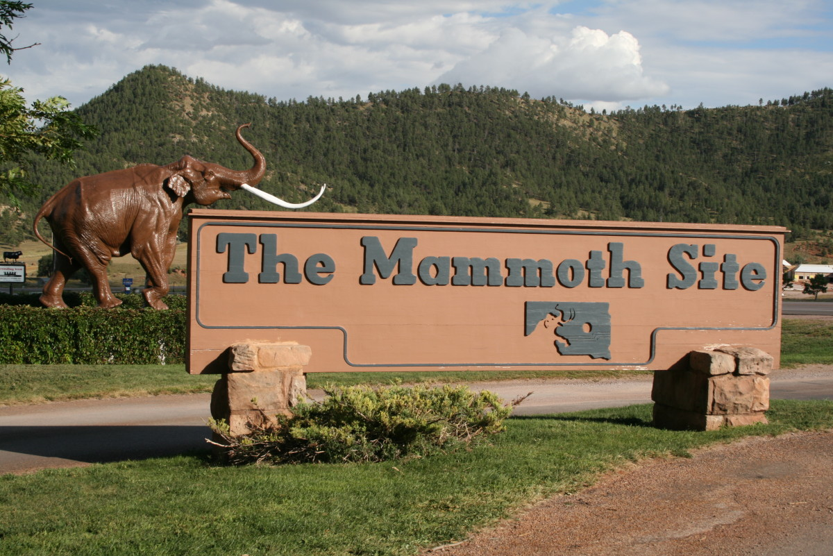 The Mammoth Site is a must-see destination for anyone interested in paleontology and prehistoric times.