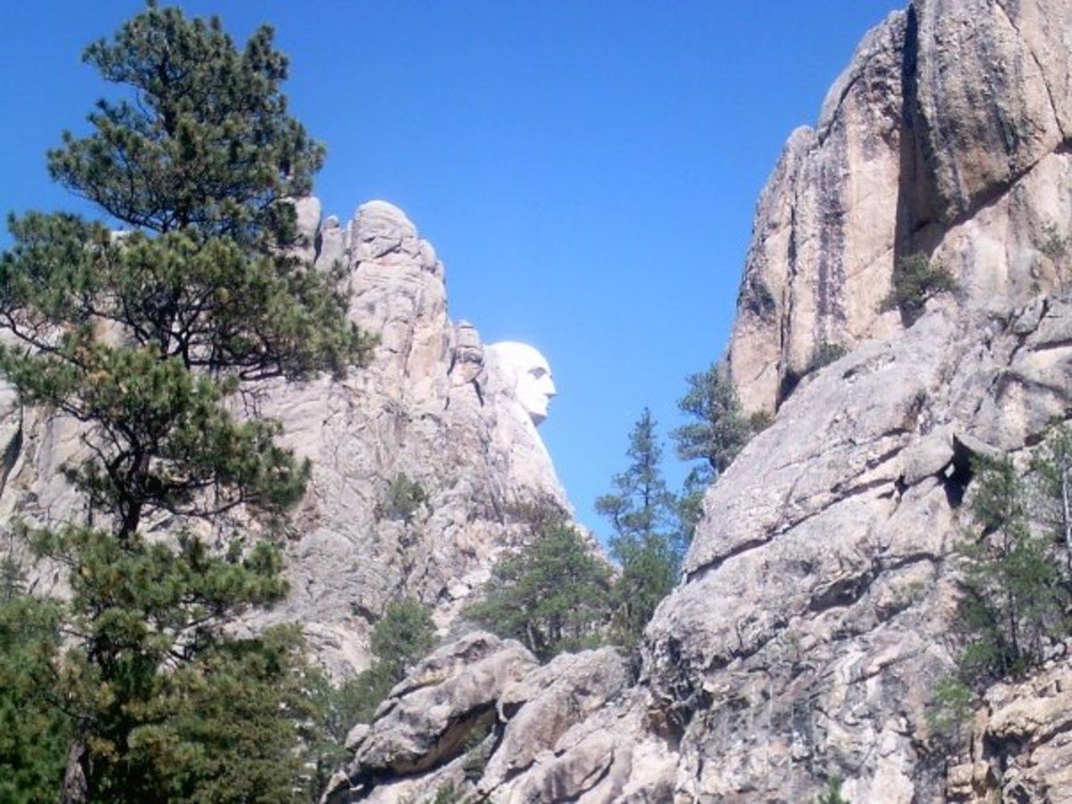 Turn out view of George - Mt. Rushmore