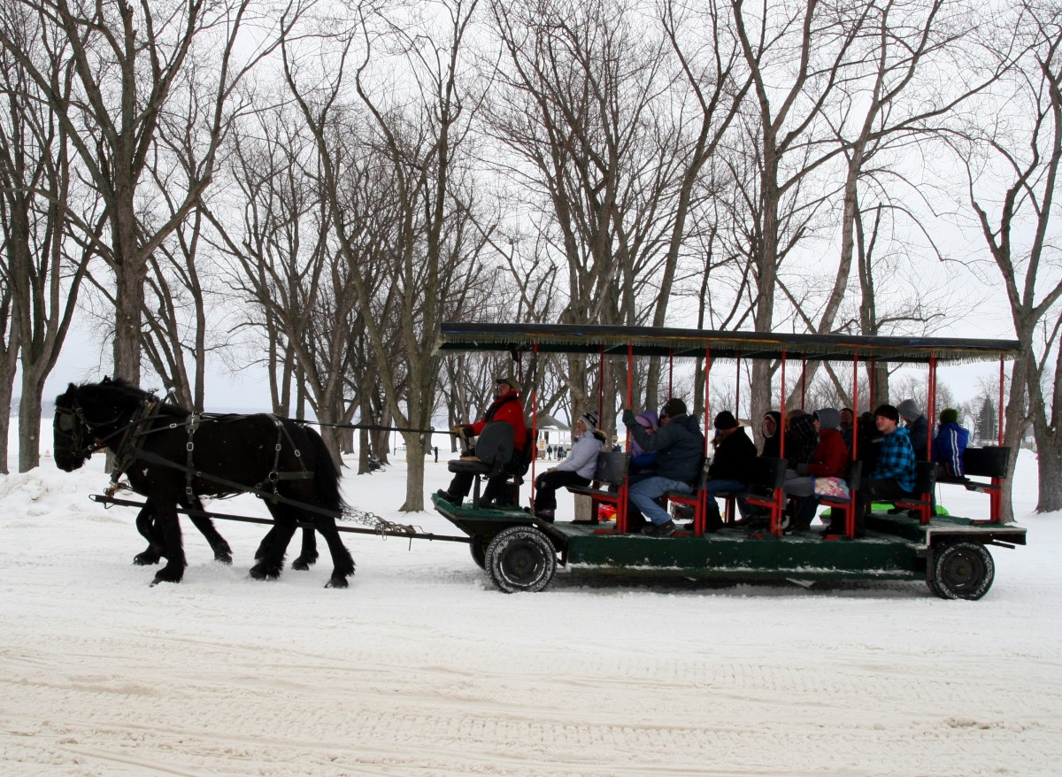 Take a sleigh ride at the Mayville Ice Castle Festival.