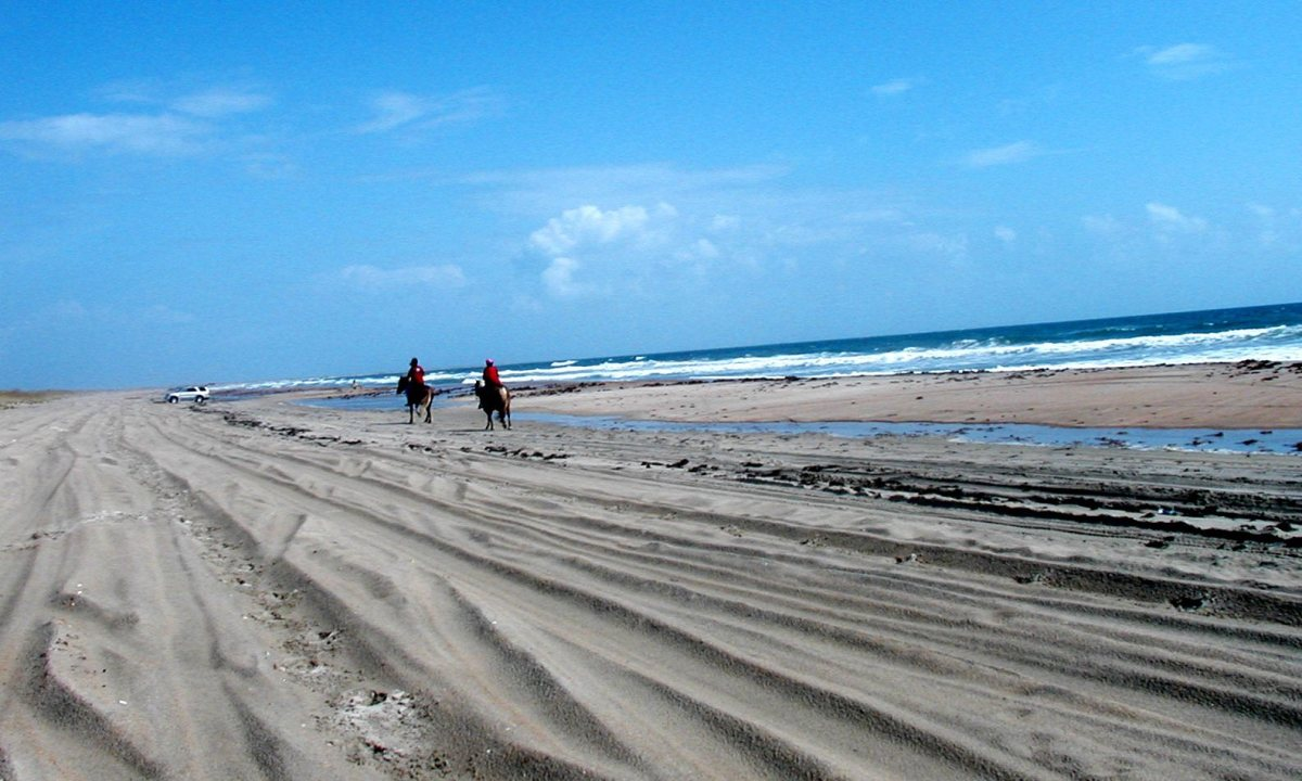 Riding horses along the shore line at Frisco, Cape Hatteras National Seashore, NC Outer Banks