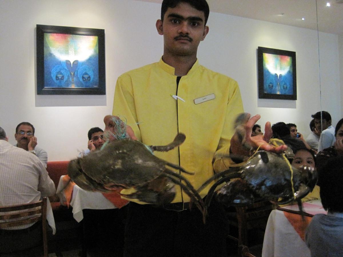 Live Crabs at Gajalee Restaurant