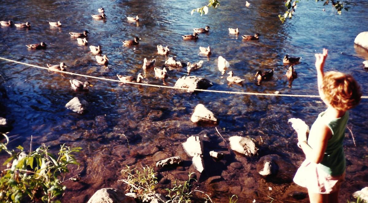 Rogue River & Ducks