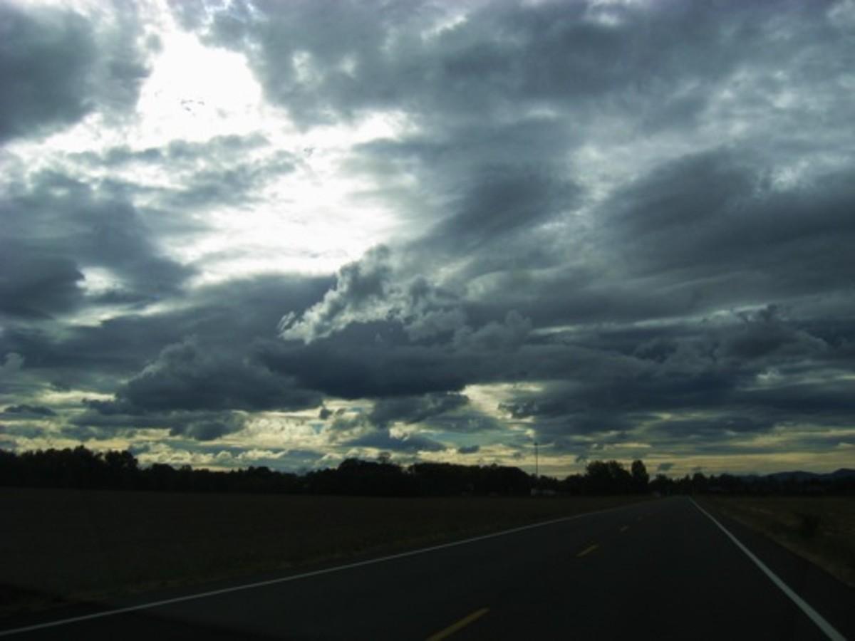 Roadside scenery near Tangent, Oregon. Don't miss the turn for Drain.