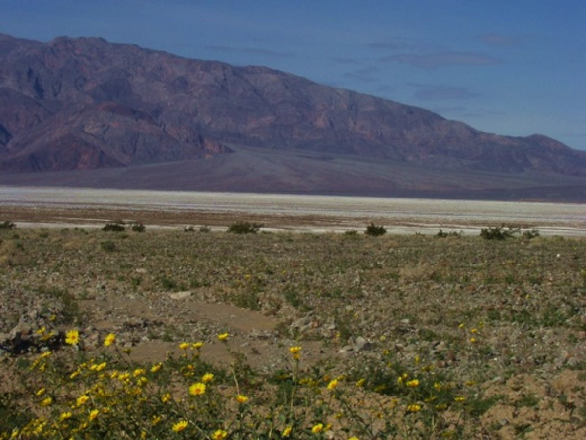 Scenery near Furnace Creek, California, in Death Valley National Park.
