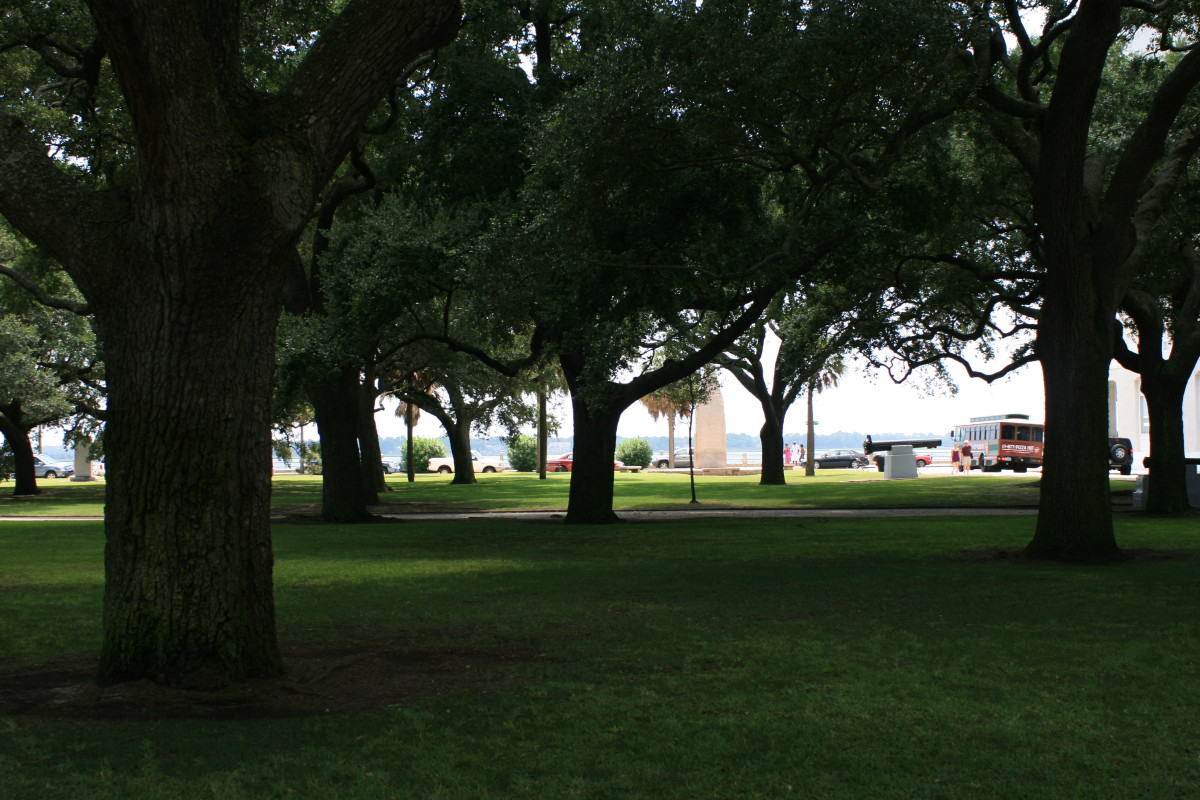 The beautiful old oak trees in the Battery Park/White Point Gardens make this a prime spot for an afternoon stroll.