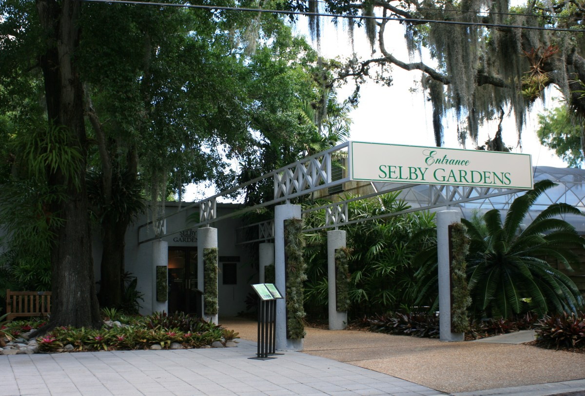 Selby Gardens is a premier Sarasota attraction.