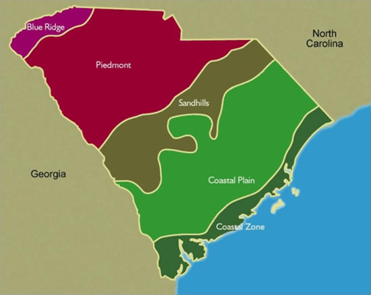South Carolina has a variety of ecological regions with diversity of plant and animal species. Visit the URL provided above to enjoy an interactive map of South Carolina's regions.