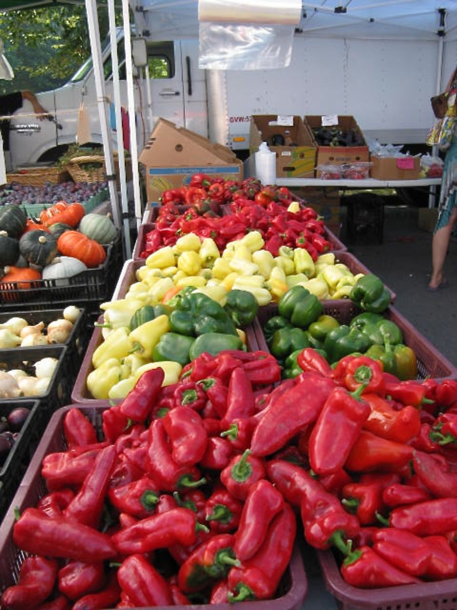 Peppers at the Trout Lake market