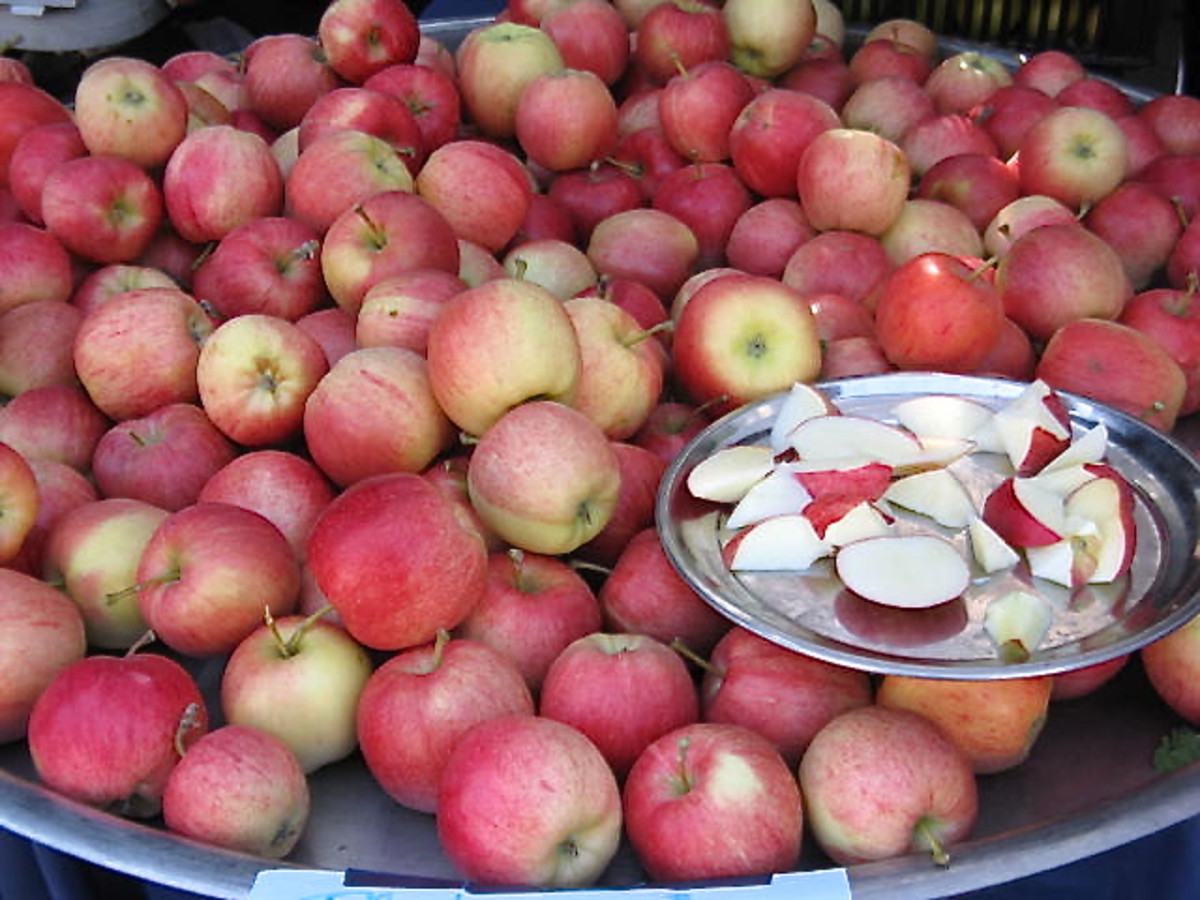 Apples can be part of a healthy diet.