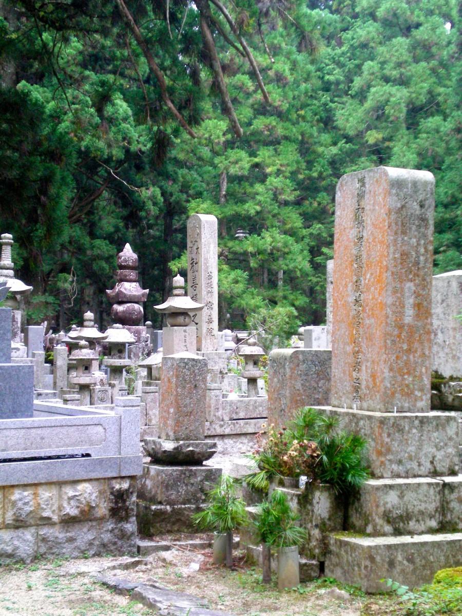 Graves along the Okunoin (c) A. Harrison