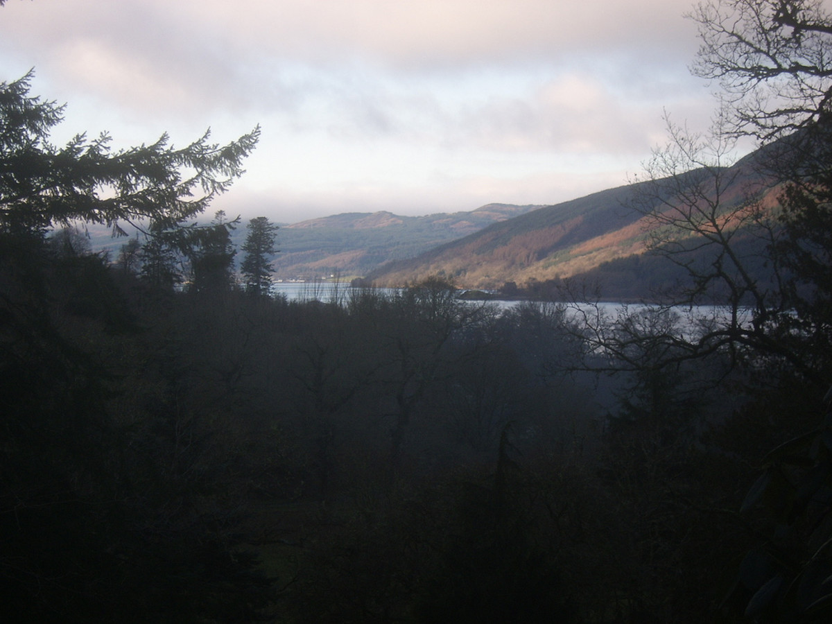 Loch Fyne pictured from a track in the Ardkinglas Estate, near Cairndow