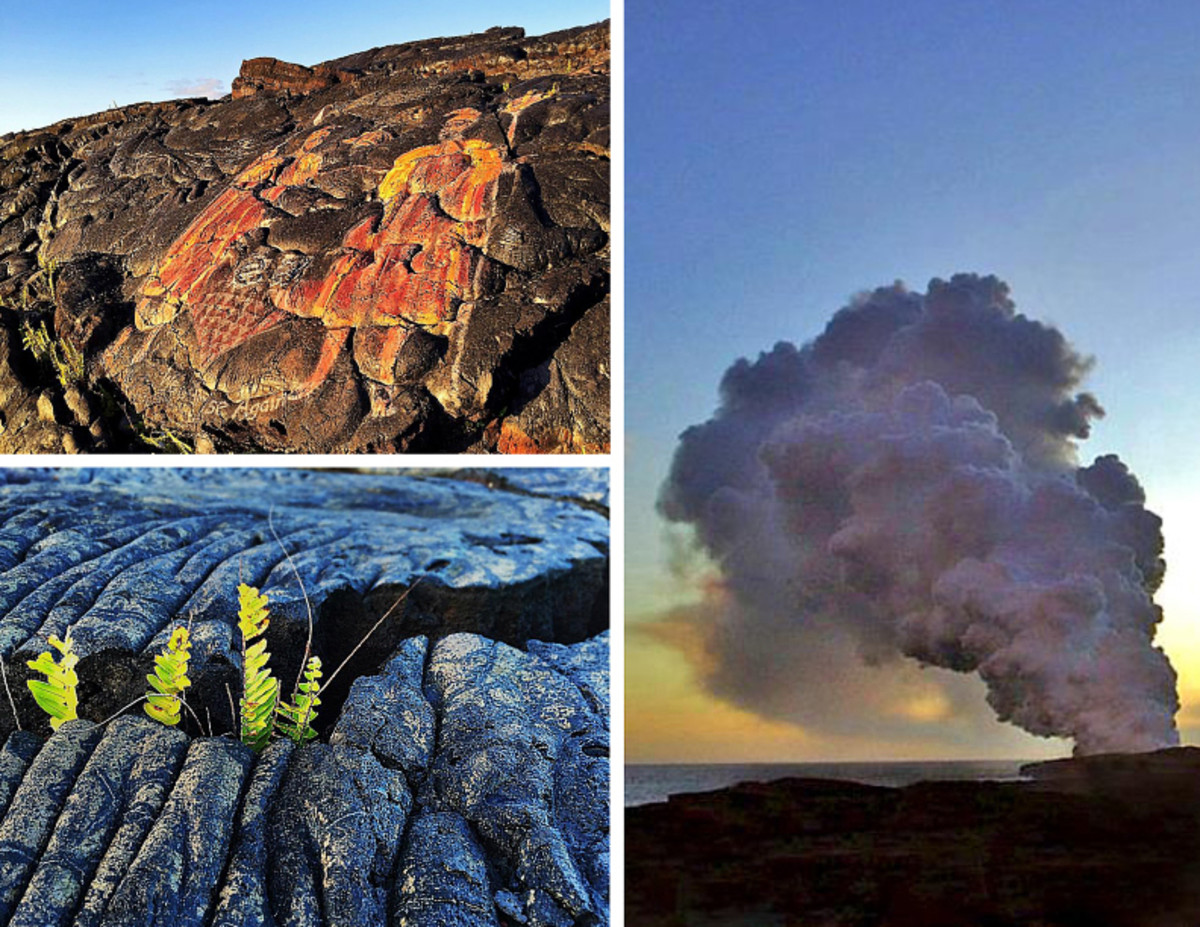Clockwise from top left: Hawaiian mural along the trail; steam plume where lava enters the ocean miles away; vegetation growing out of a lava rock crack.
