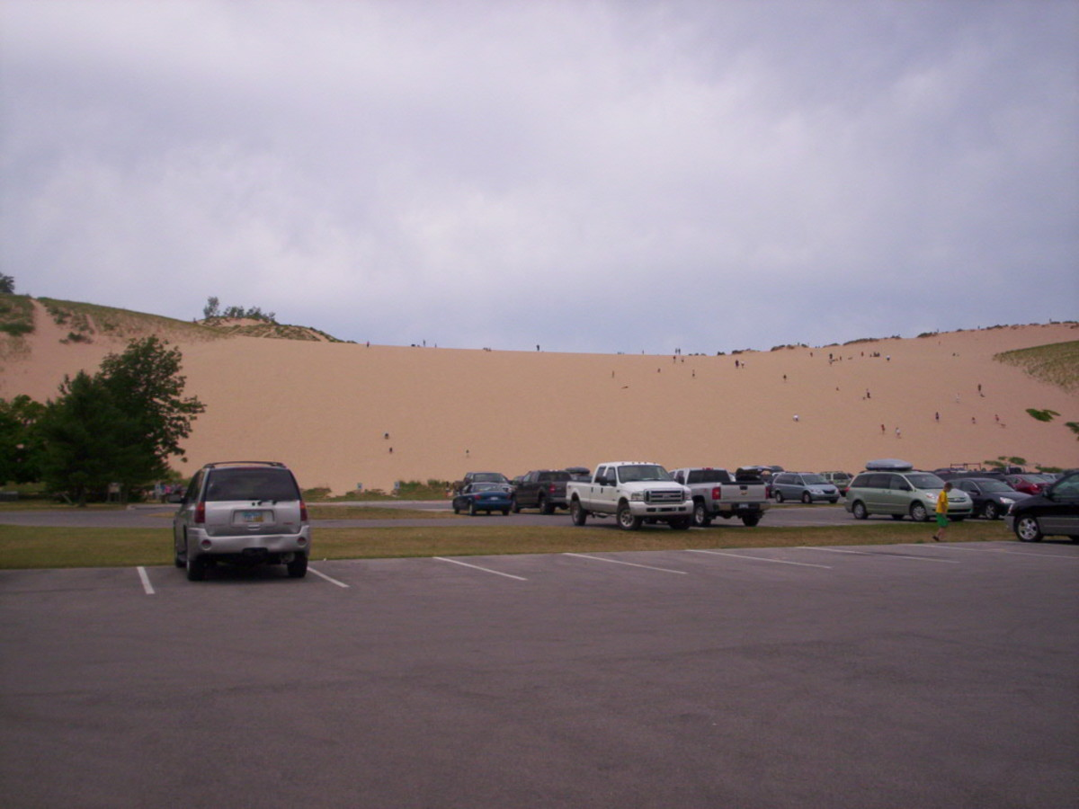 Large Dune in Background