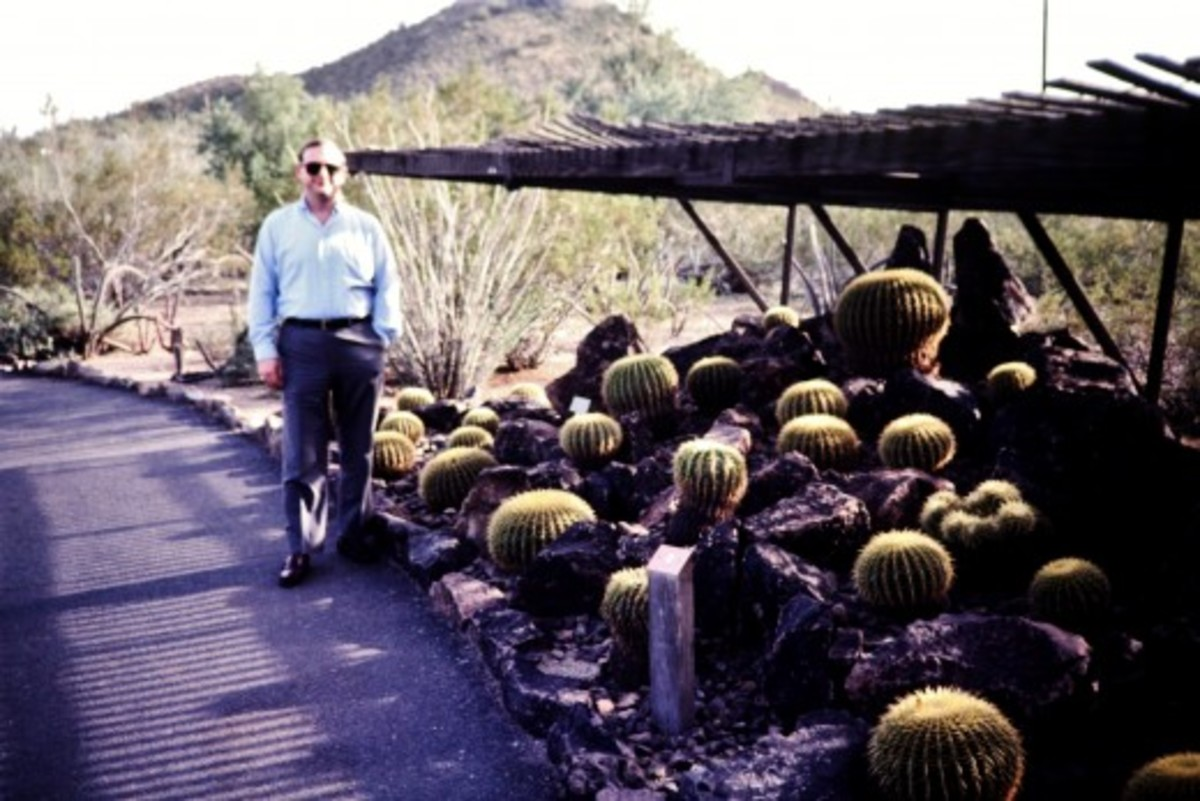 My hubby in the Desert Botanical Garden