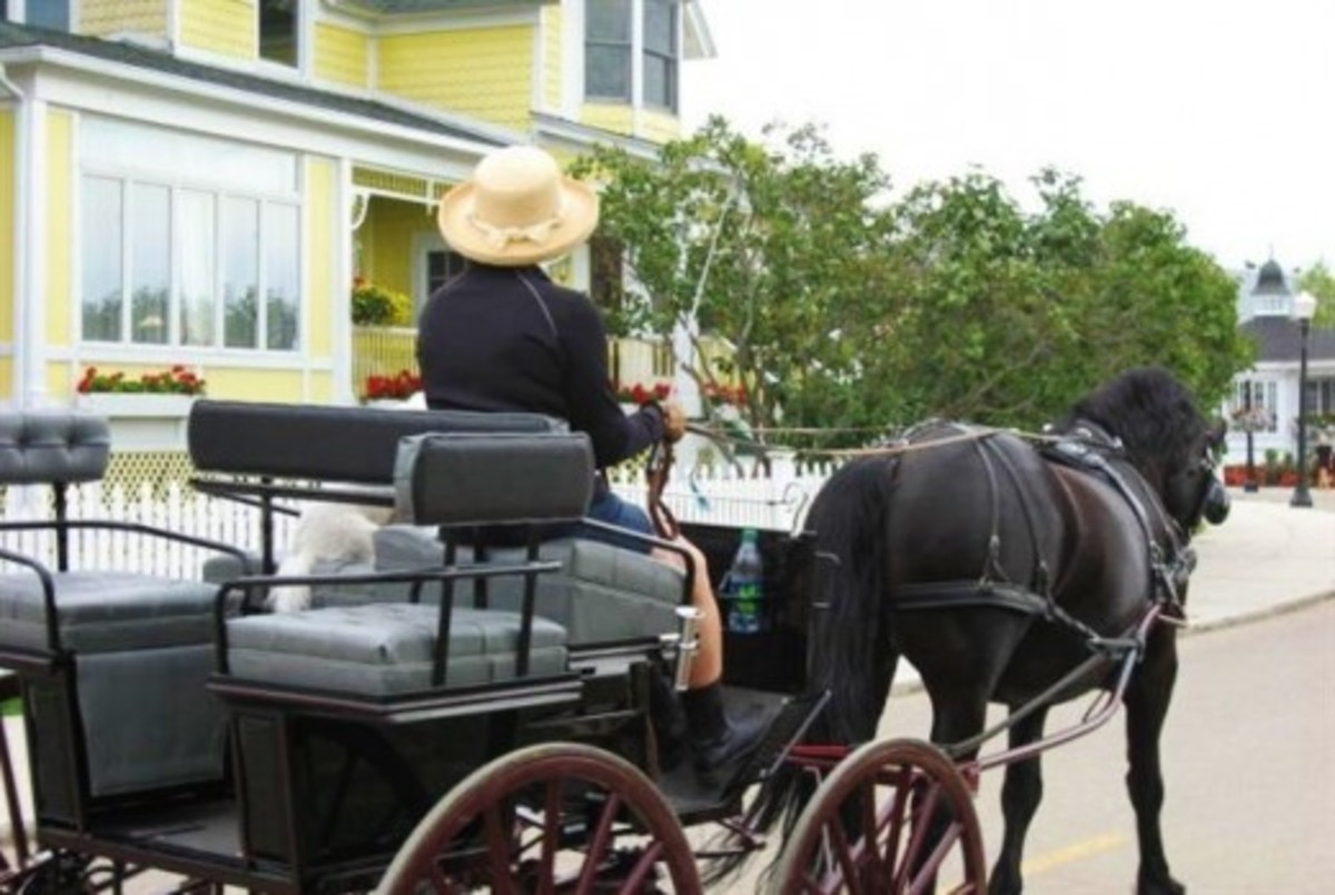 Horses and carriages on Mackinac Island