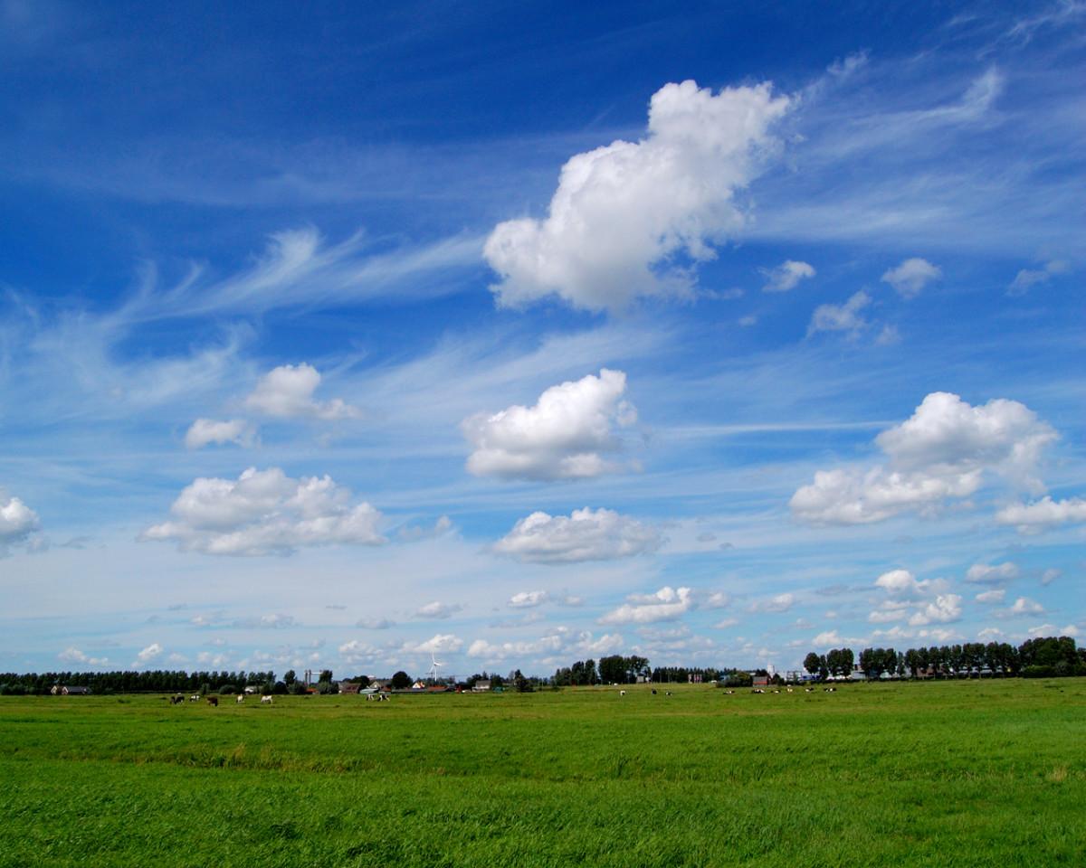 Zuidplaspolder, Netherlands.