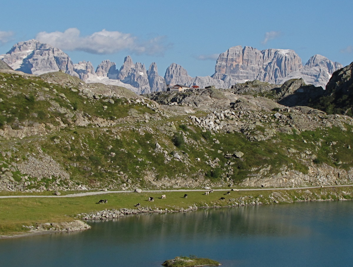 The Brenta Dolomite group