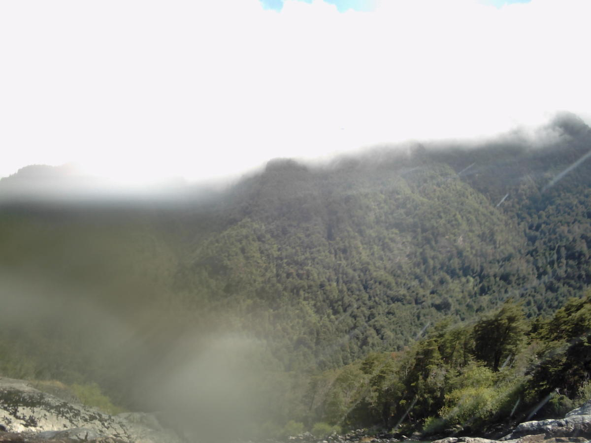 These misty mountains are home to many of the  Mapuche people