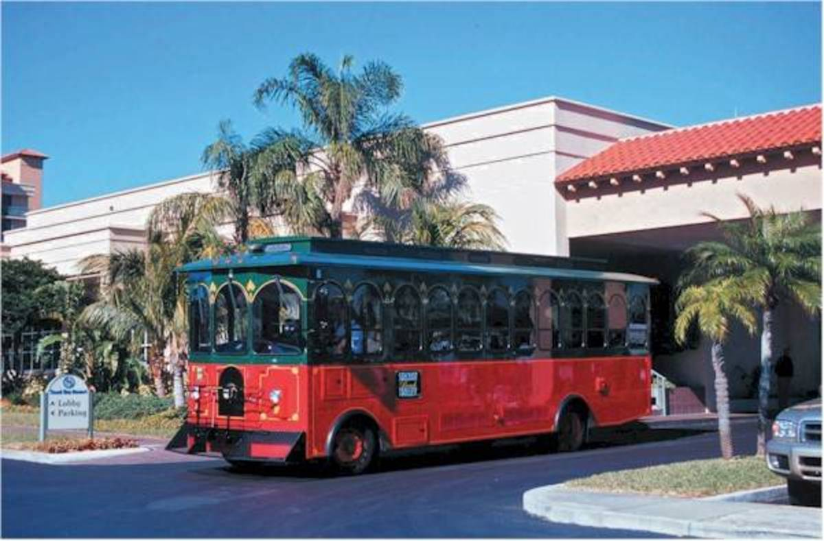 For a fun way to travel up and down the coast take the Suncoast Beach Trolley.