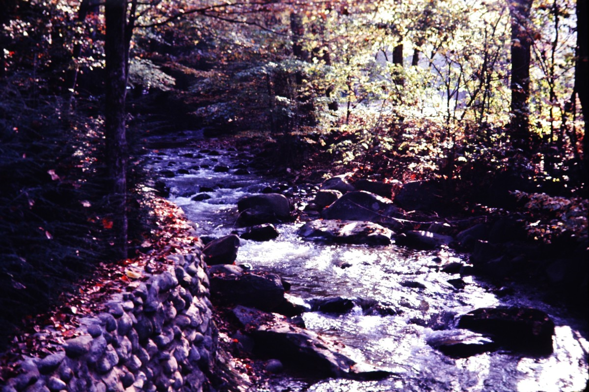 Little Pigeon River seen at ground level from the Riverview Motor Lodge in Gatlinburg.