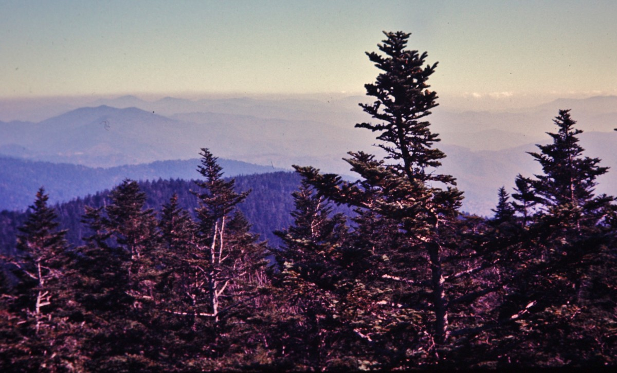 Scenery viewed from Clingmans Dome in Great Smoky Mountain National Park