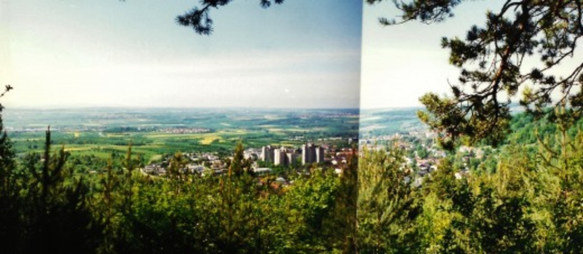 Two photos pieced together showing Herrenberg & landscape below the Alten Rain (forested area) which was high above.