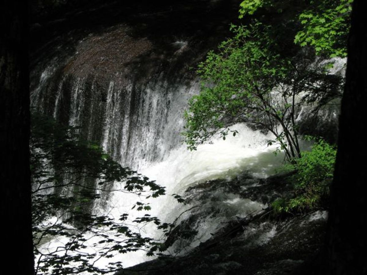 Ko falls, through the summer growth in the forest.