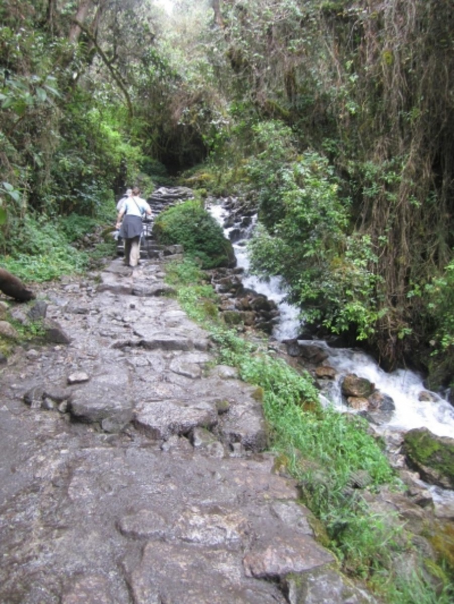 "Most of the Inca Trail hike is on a path ""paved"" with rocks."