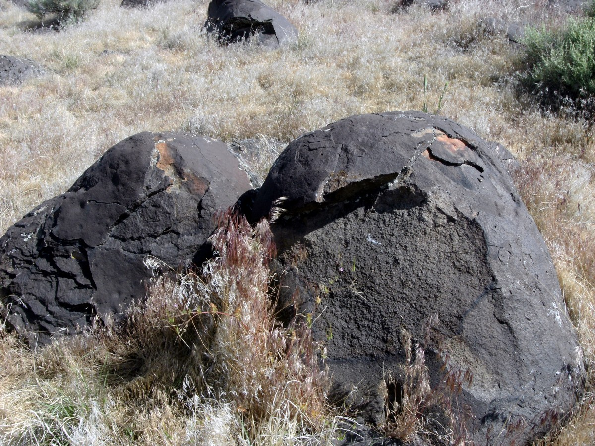 Although cracked and weathered, the rocks are rounded from being washed and rolled by water.