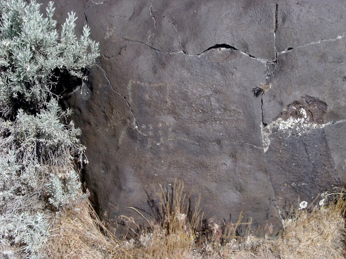 visiting-celebration-park-and-the-rock-art-petroglyphs