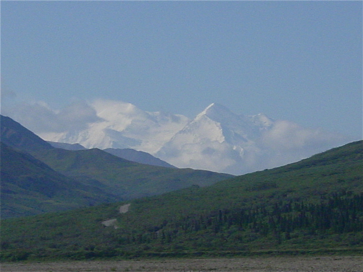 Denali showed itself briefly on our trip