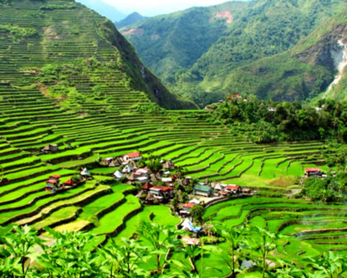 Banaue Rice Terraces: Eighth wonder of the world.