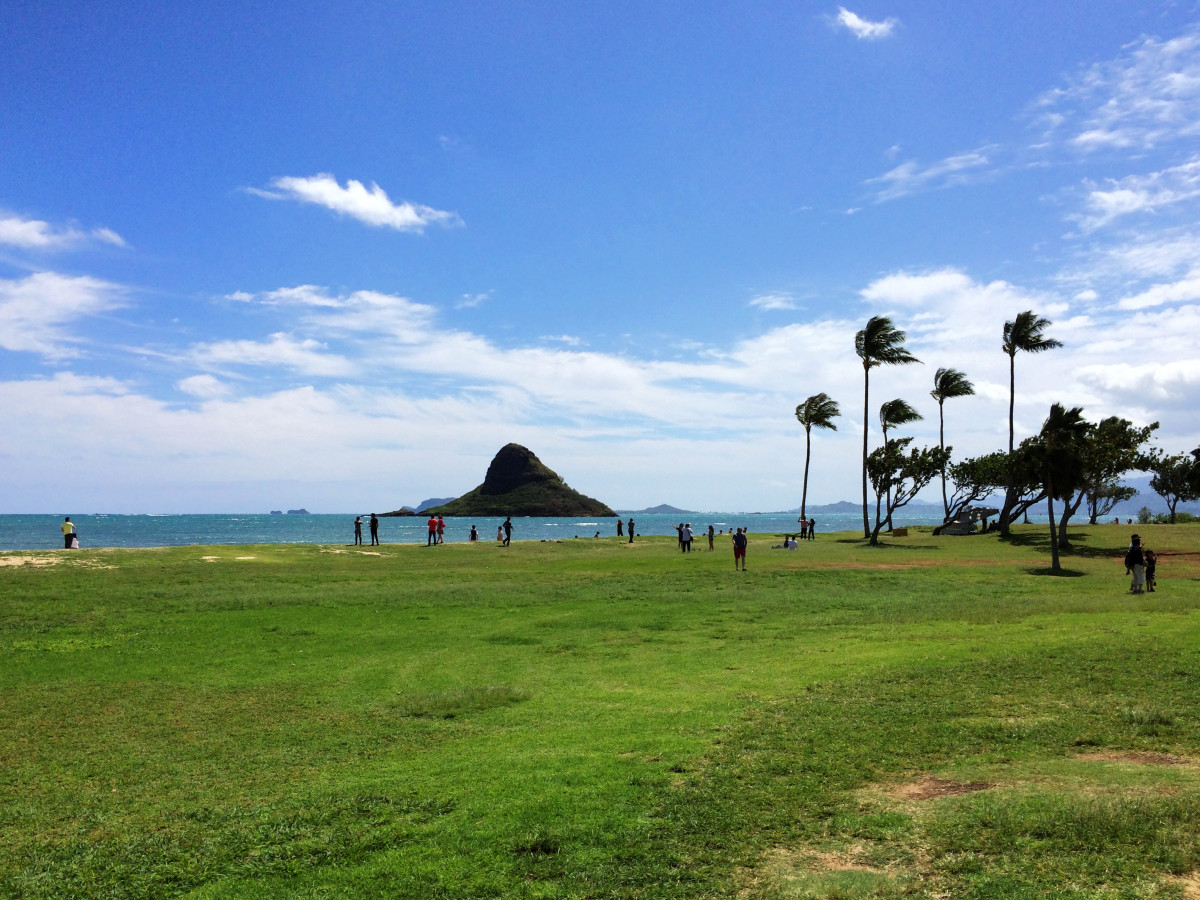 Kualoa Beach Park is a serene rest-stop with picnic tables and bathrooms. You will have a full view of Mokoli'i, also known as Chinaman's Hat, an offshore islet.