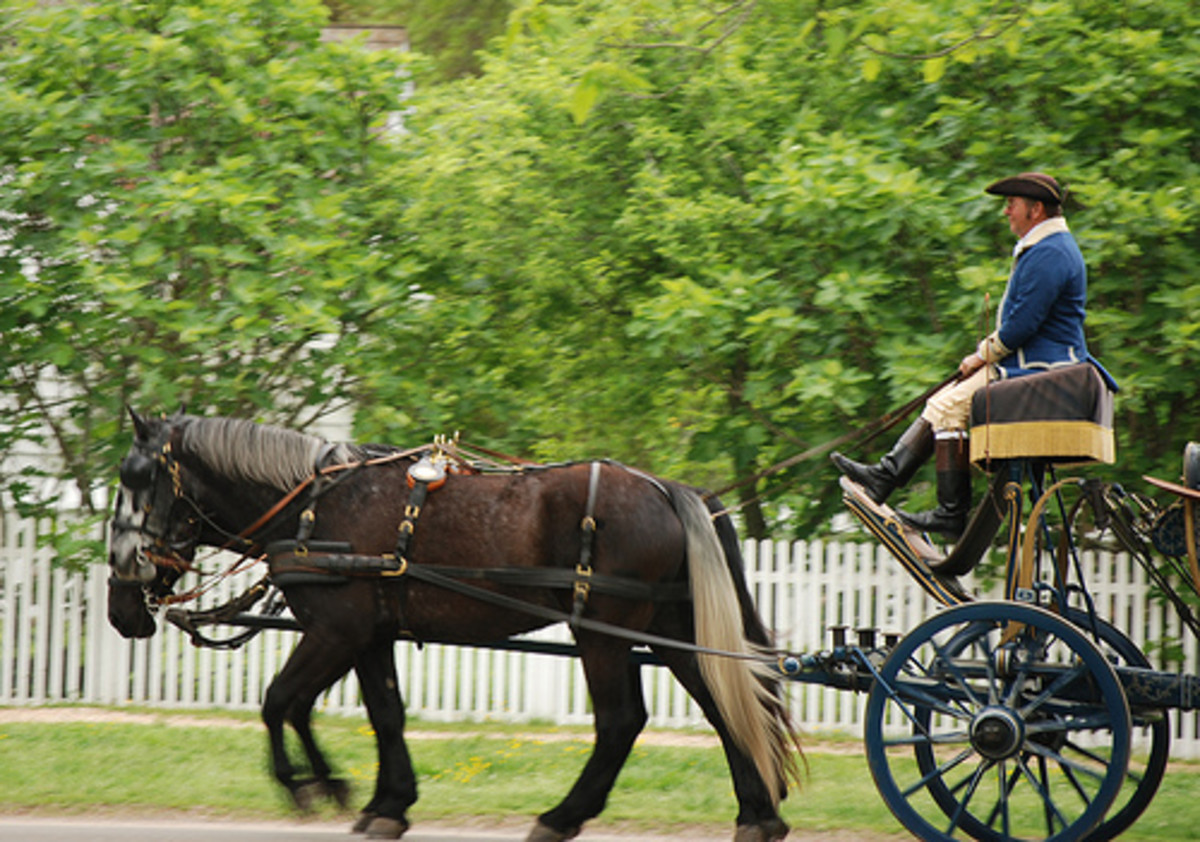Horse and carriage at Colonial Williamsburg
