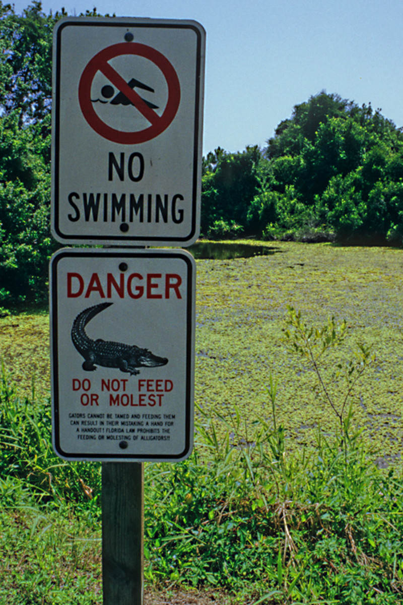 I couldn't resist this signpost by a lakeside in Boyd Hill. With the 'Do not Feed or Molest' warning in place, is the 'No Swimming' warning really necessary?