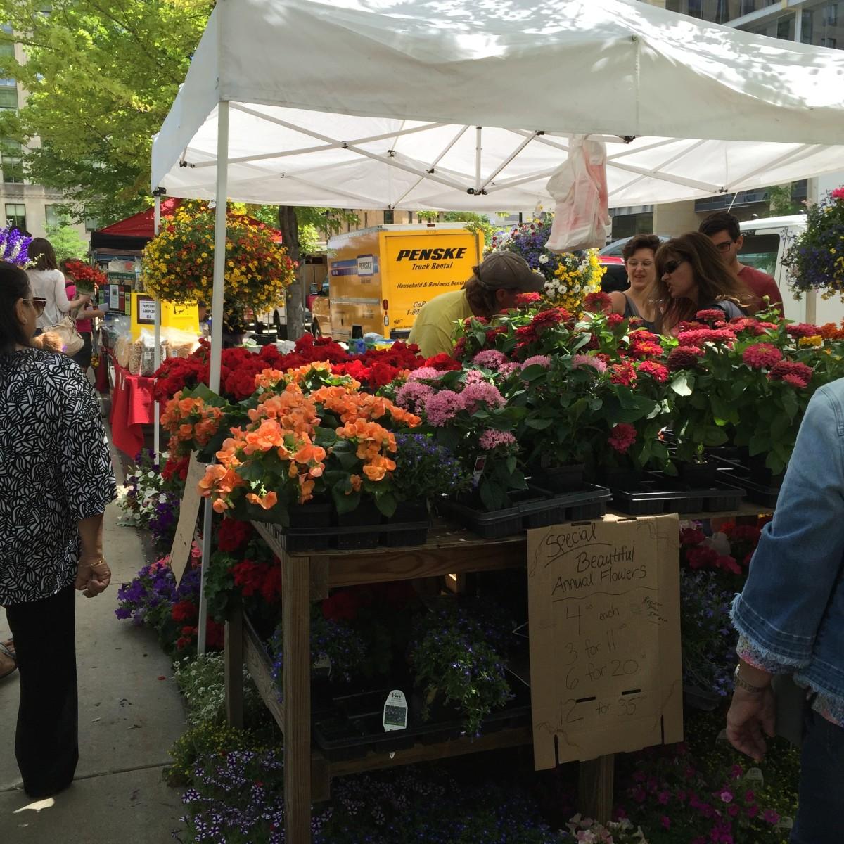 Dane County Farmer's Market