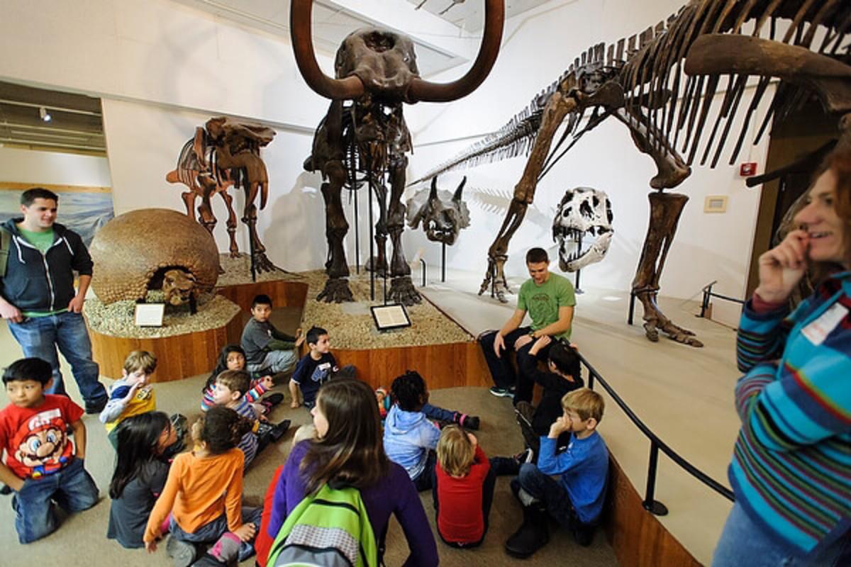 UW Madison Geology Museum