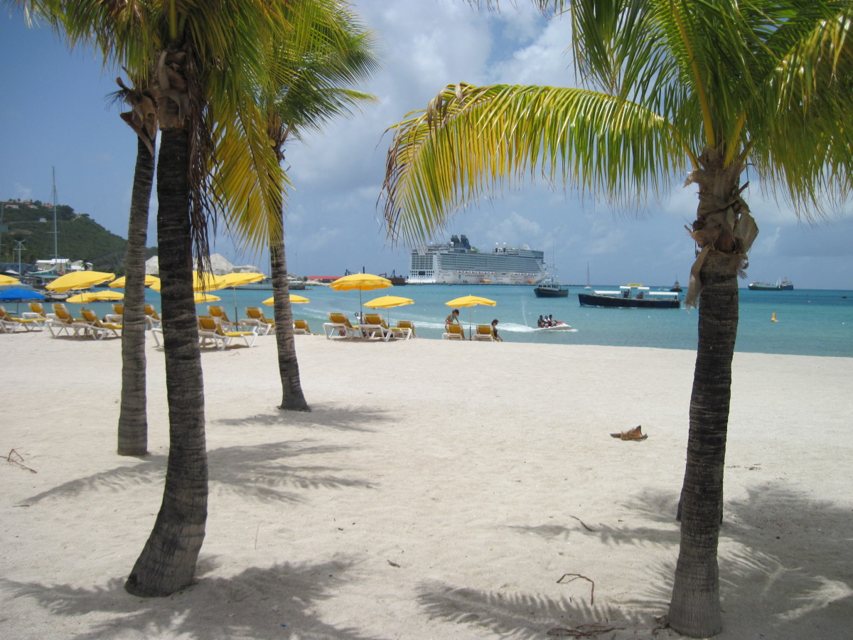 The beautiful Norwegian Epic framed by palm trees on the beach in St. Maarten in the Caribbean.