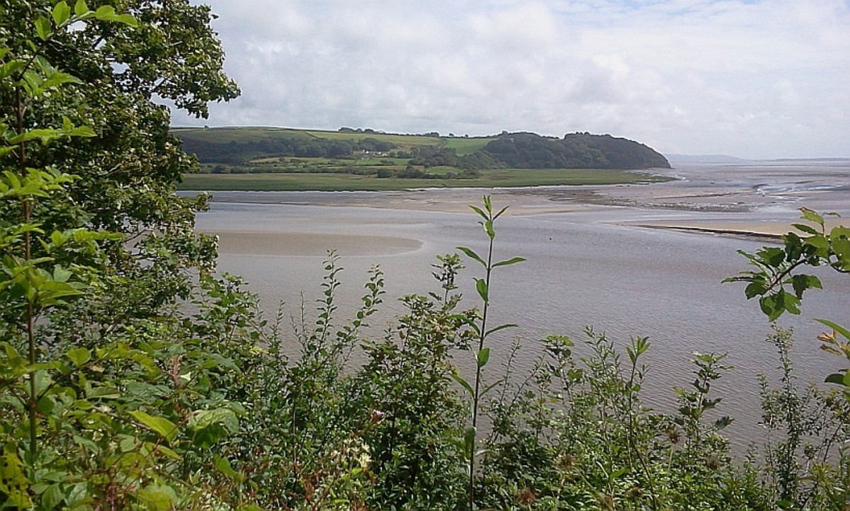 The view from his writing shed that inspired Dylan Thomas