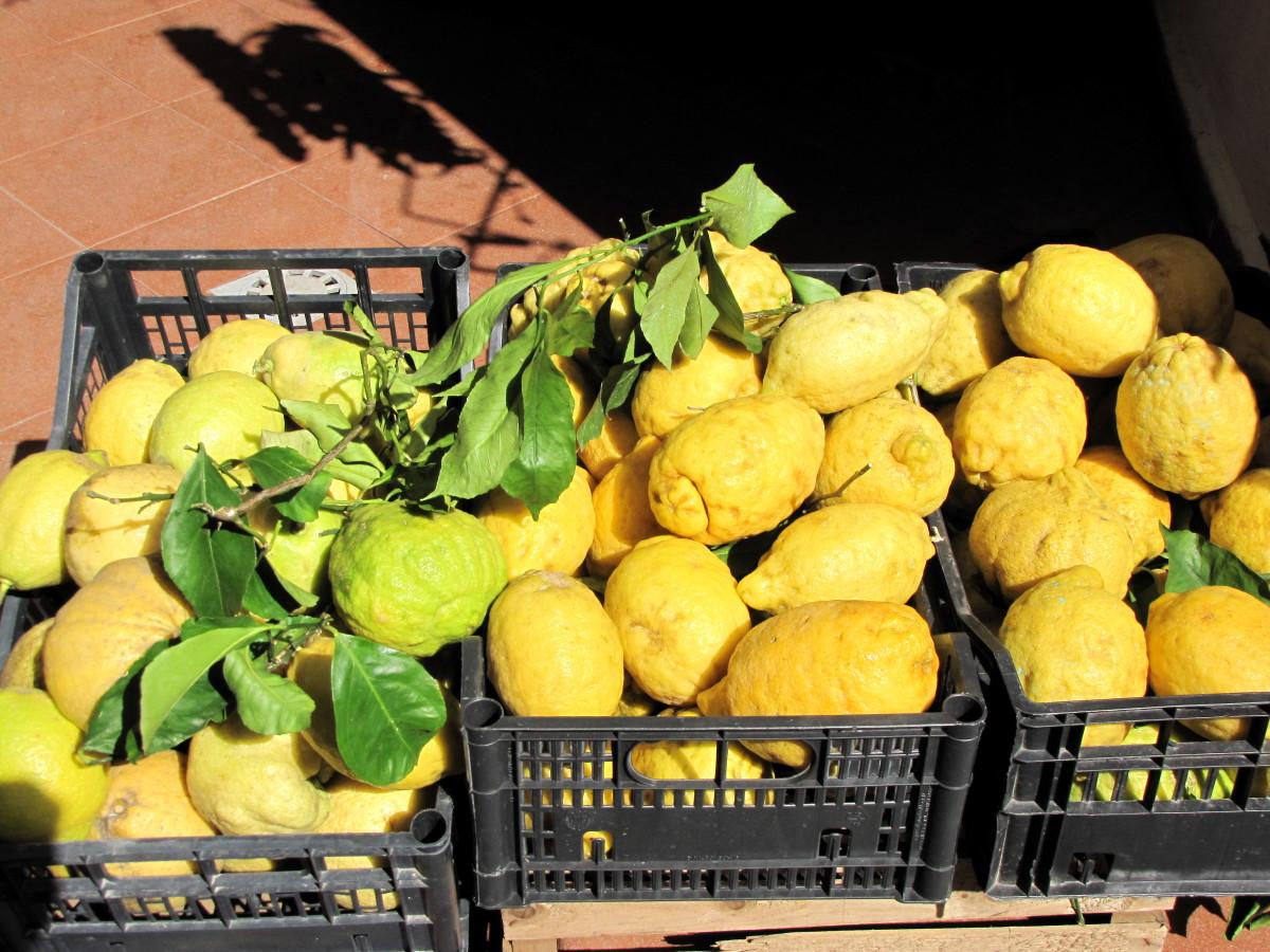 The Sfusato Amalfitano Lemon