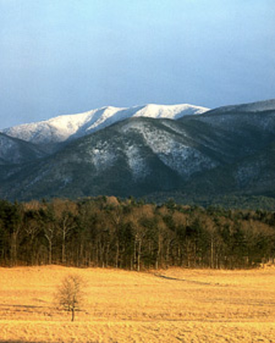 Thunderhead Mountain at Cades Cove.