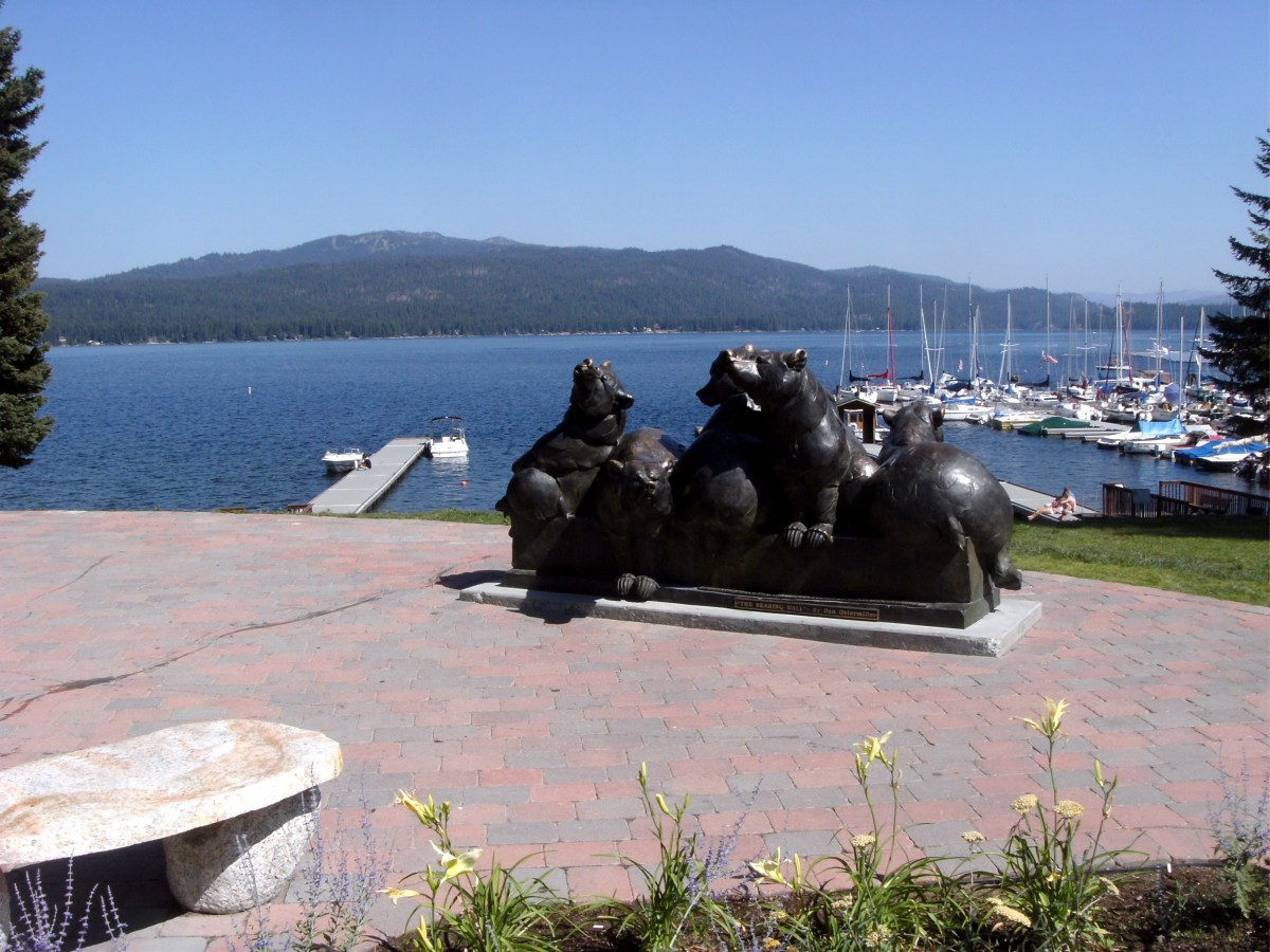 Bears, overlooking the park and marina