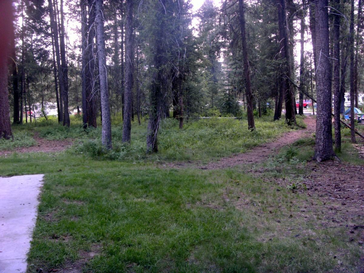 Ponderosa State Park campground.