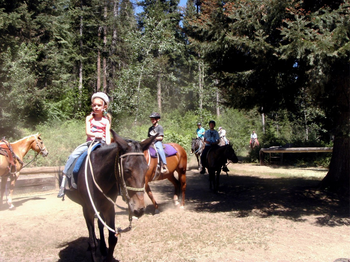 The kids very much enjoyed their horseback ride on our McCall trip.