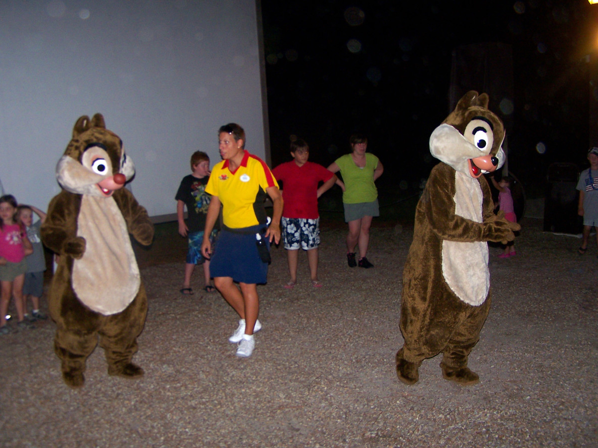 Do the Hokey Pokey and pose for pictures with Chip 'n Dale